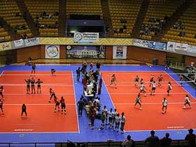 Arena Volleyball Courts
