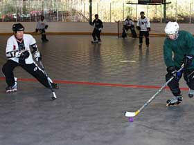 Commercial Inline Hockey